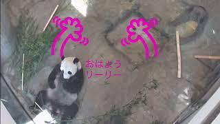 9/19  ご飯を求めてウロウロ thumbnail