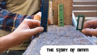 The Story of Dimm
