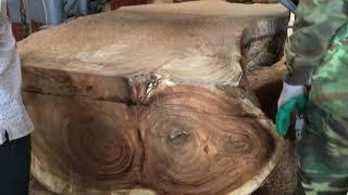 Xẻ gỗ me campuchia: tính chất đặc điểm và cách nhận dạng