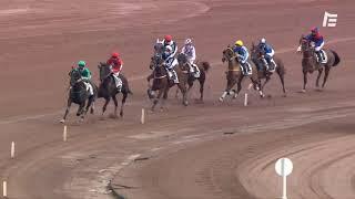 Vidéo de la course PMU PRIX SCARLET TURGOT