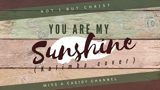 """YOU ARE MY SUNSHINE""- Kalimba Cover by Miss A Casidy"