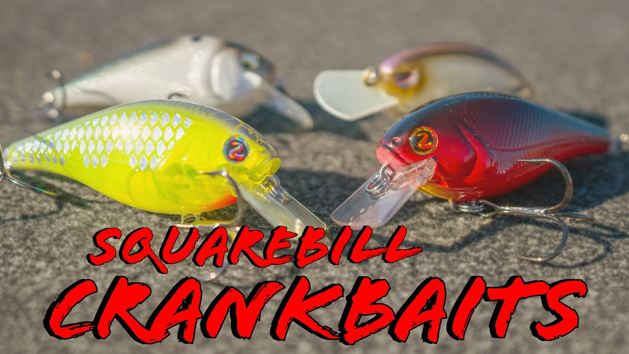 Hard to Find Lucky Craft BDS 3,Square Bill,Spring Craw