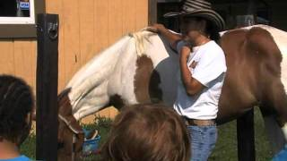 Rancho Alegre Farms: Community Farm In Atlanta Suburbs