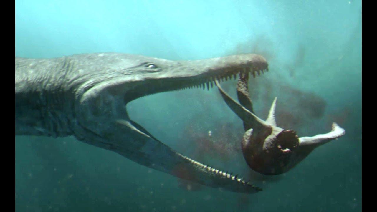 super popular 8a680 7c3a7 Predator X hunts in deep water   Planet Dinosaur   BBC