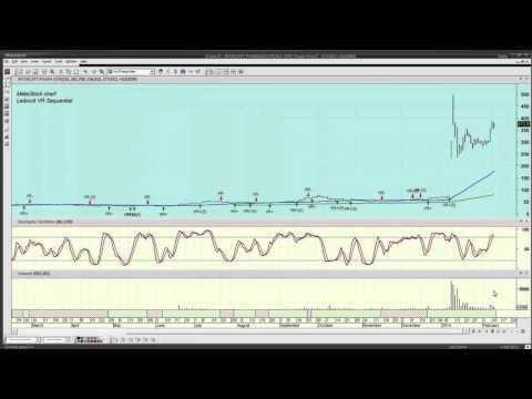Volume reversal forex indicator leibovit mark
