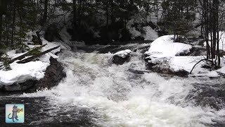 12 HOURS of Relaxing River Sounds - Peaceful Winter Forest River & Gentle Stream (Sleep Sounds)