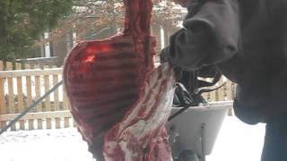 Deer Quartering 101: Removing The Ribs