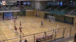 【ハンドボール】第43回JHLトヨタ自動車東日本VS大崎電気シュートシーン【ハンドボールリーグ】handball