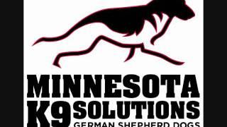 Schutzhund Dog Trainers In Minneapolis.wmv