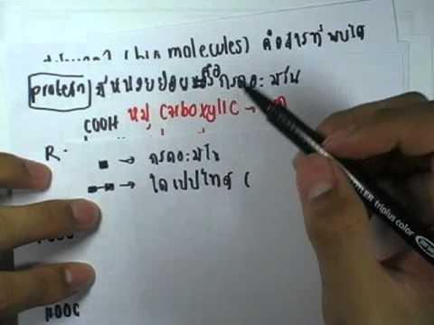 ข้อสอบเคมี O-NET ,ปี2554 ,ข้อ19