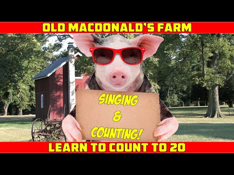 LEARN TO COUNT 1-20   Old MacDonald Counting Song