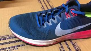 Nike Zoom Structure 21 FI