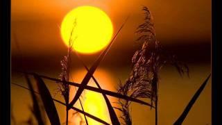 Fenomenon - Solara