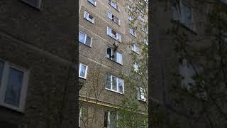 Спасение кота в Екатеринбурге