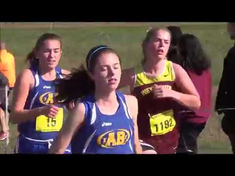 Eastern Mass Division 1 Cross Country 2016: ABXC