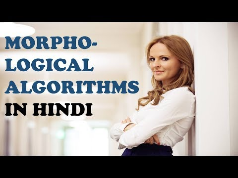 11 MORPHOLOGICAL ALGORITHMS IN HINDI