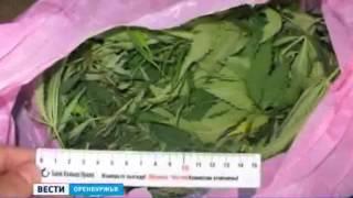Оренбуржец менял марихуану на алкоголь