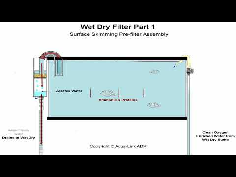 Aquarium Wet Dry Filters How Do They Work