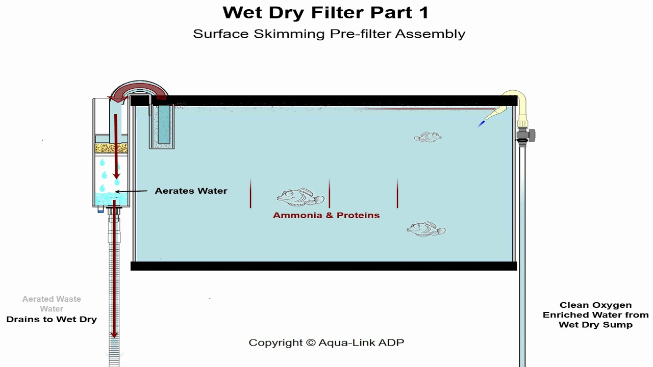how do water filters work diagram aquarium wet dry filters how do they work youtube  aquarium wet dry filters how do they