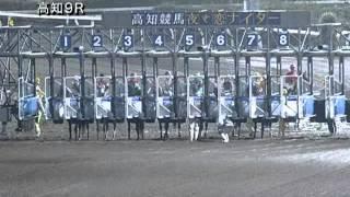 2013/08/25 高知競馬9R 福留厩舎協賛 ヒノデマキバオー特別 優勝 マイネ...