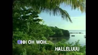 Hallelujah - Bamboo (Karaoke Cover)