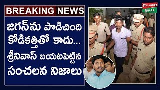 Video Jagan Attacker Srinivas Rao Lawyer Saleem Reveals Shocking Facts About Attack Incident download MP3, 3GP, MP4, WEBM, AVI, FLV November 2018
