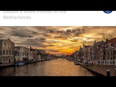 Obtain a Work Permit in the Netherlands