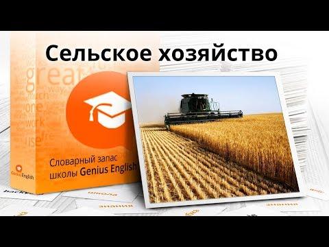 """Тема: """"Сельское хозяйство  """" - Словарный запас школы GeniusEnglish"""