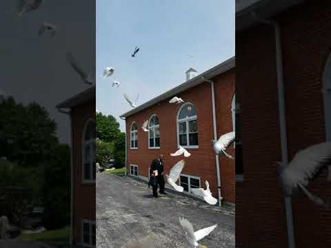 Dove release at Faith Theological Seminary graduation