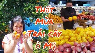 Vườn trái cây LÊ, SUNG, TÁO TÀU thất mùa ở Mỹ, mua trái cây ở chợ Hàn Quốc