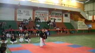 formas de chaiu do kwan