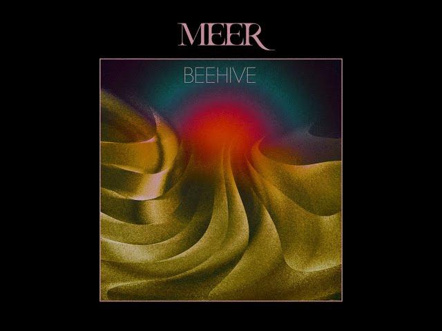 MEER - Beehive (Official Music Video)