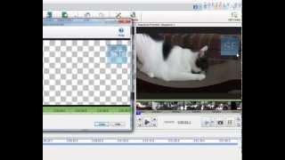 Как вставить изображение или логотип  в видео.(Добавление изображения в видео в программе Videopad 3.14 Скачать программу:http://www.softfly.ru/multimediya/konvertory-i-videoredaktory/92-vide..., 2013-11-04T06:22:11.000Z)