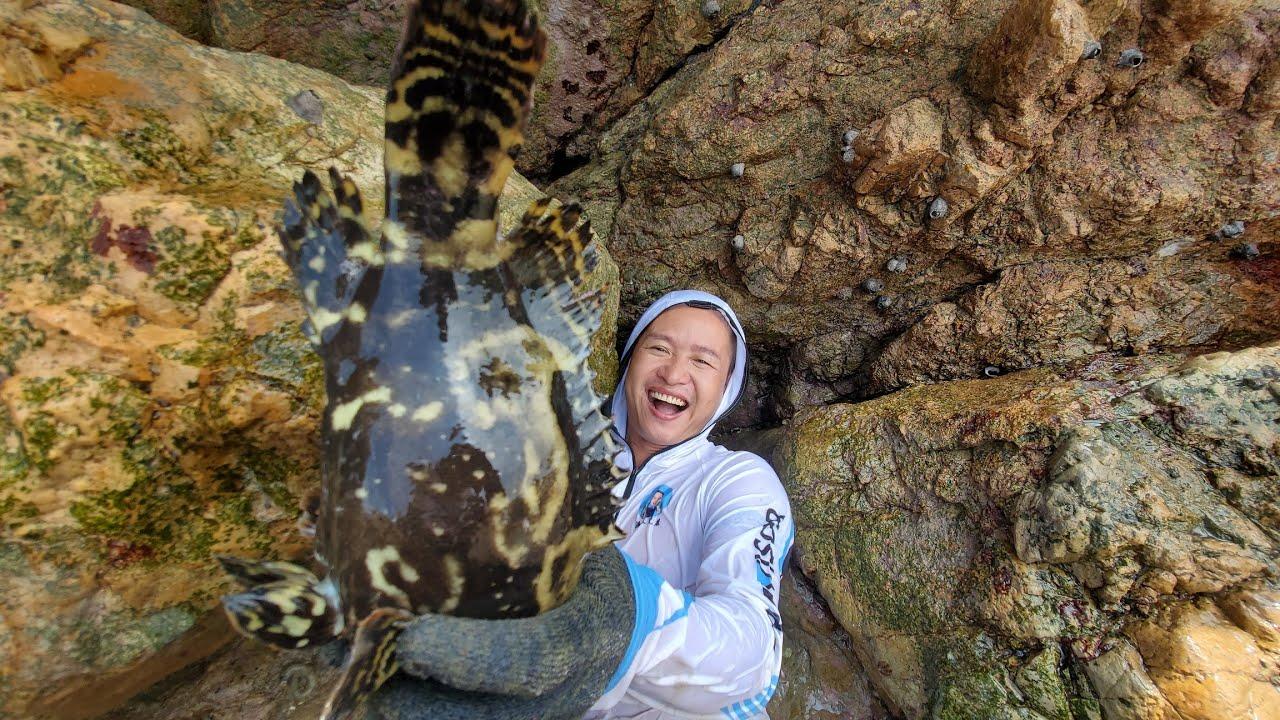 之前看不上的水坑,小明用水下相机一探究竟,没想到是海货的老巢