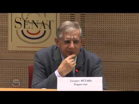 Audition de M. Tanneguy LARZUL, président de la commission centrale permanente compétente en matière