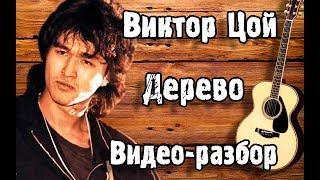 ВИКТОР ЦОЙ  - ДЕРЕВО   Кавер + Разбор На Гитаре   Как Играть Песню Дерево - Кино