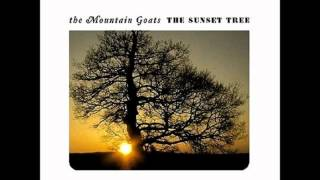The Mountain Goats - You or Your Memory