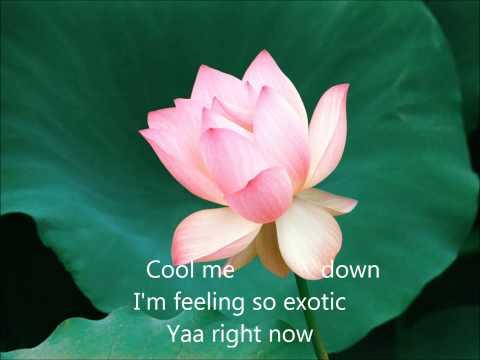 Priyanka Chopra ft Pitbull- Exotic Lyrics