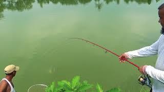Big Catla Fishing Videos Of Calm Fish Hunter's