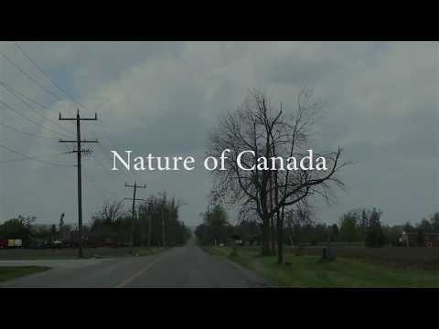 Nature of Canada | Brampton | Ontario