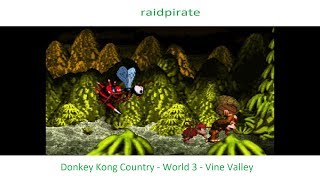 Donkey Kong Country - World 3 - Vine Valley