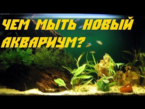 Как установить аквариум.  Чем мыть аквариум.  [#Аквариум для новичков]