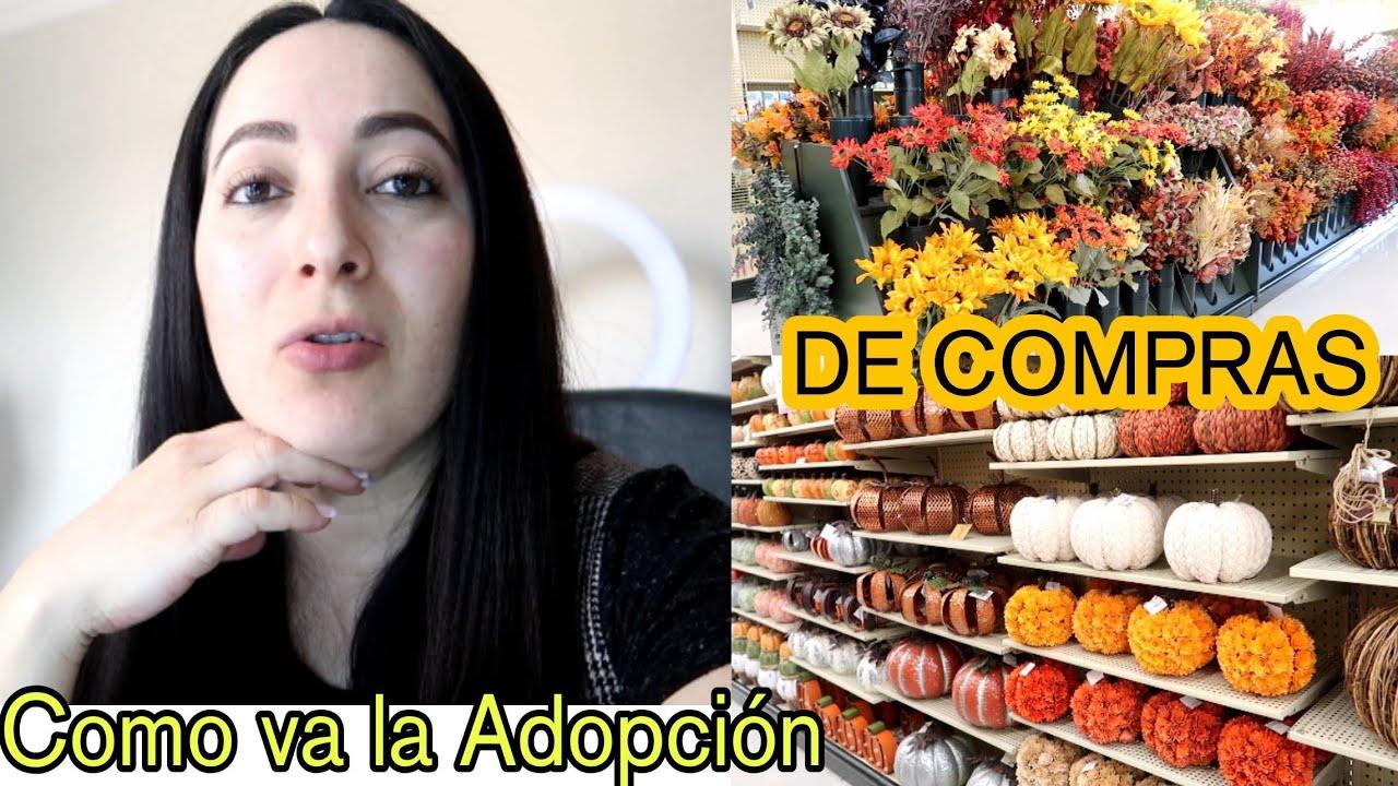 COMO VA LA ADOPCION/NOS FUIMOS DE COMPRAS