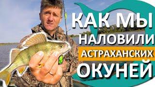 Рыбалка на ОКУНЯ Астрахань 2020 Приманки на ОКУНЯ КОТОРЫЕ ЛОВЯТ Ловим НА СИЛИКОН