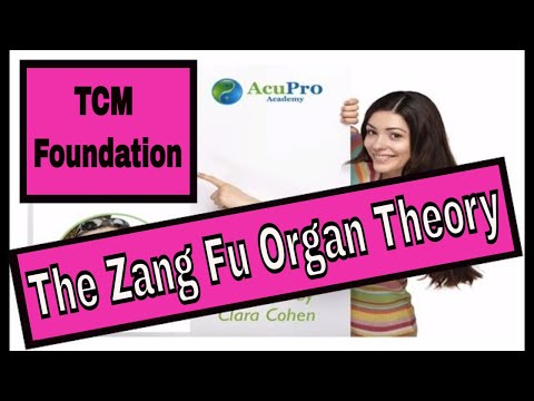 The Zang Fu Organs Theory