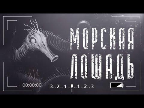Морская Долговязая Лошадь | The long seahorse - Монстры leovincible | Unnerving images