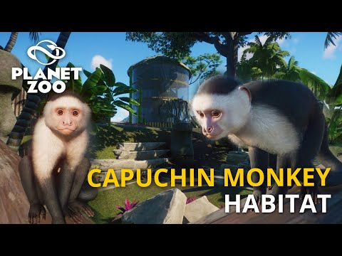 Planet Zoo: South America Pack   Colombian White-Faced Capuchin Monkey Habitat   Speed Build  
