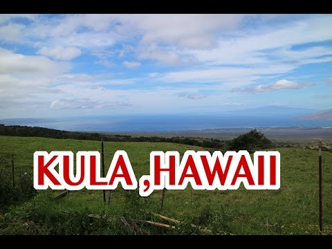 VLOG # 1 ME FUI A KULA, HAWAII