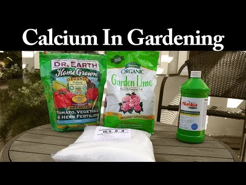 Calcium Products - What Is Calcium And How To Use Calcium In Gardening