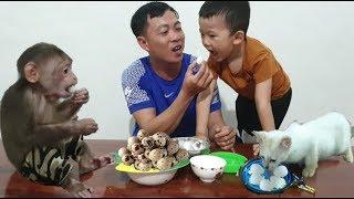 Baby Monkey | Monkey Doo And Cat Miu Eat Quail Eggs With Family